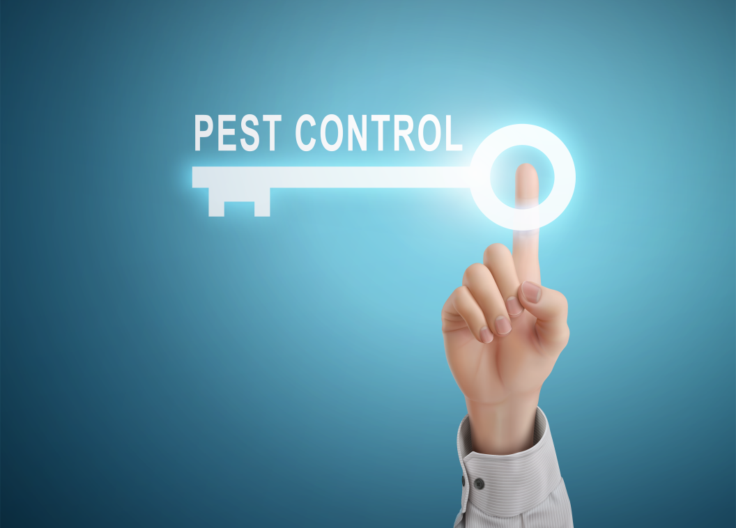Pest Proofing Your Business